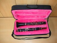 BRAND NEW ALBERT SYSTEM Bb CLARINET 14 KEYS+FREE HARD CASE+MOUTHPIECE+FAST SHIP