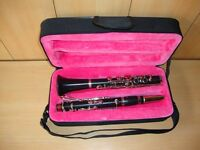 NEW ALBERT SYSTEM Bb pitch CLARINET 14 KEYS+FREE HARD CASE+MOUTHPIECE