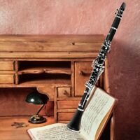 Professional Clarinet Black Musical Instruments Cupronickel Silver Plated New