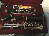 It is a special wood signet Selmer clarinet comes with all cleaning tools