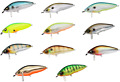 Duel Hardcore ShadCrank 65F 0+/1+ Shallow Crankbait/Wakebait Bass Fishing Lure