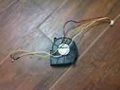 Fisher Paykel Dishwasher Harness Part 526752