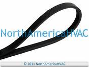 Dryer Belt Fits Whirlpool Maytag 8066065 695055 694868 694416 694088 693306