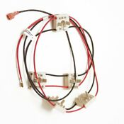 316580615 Frigidaire Harness Ignitor Genuine Oem 316580615