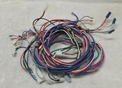 Maytag Neptune Gas Dryer Wiring Harness Part 33002614 Used Free Shipping