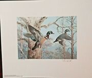 Pa1 Pennsylvania Duck Stamp Print 1983 - Ned Smith And Stamp - Rare