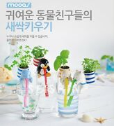 [mooas]self Watering From Seafriend-chuppon Animal Straw Mini Table Potted Japan