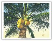 Branching Out Coconut Palm Vintage Original Painting Art Poster Print Giclandeacutee