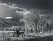 Liliane Decock Image/photograpgh. Evening Taos Mexico 1970's.  Signed