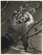 German Actress Marlene Dietrich + Autograph, Signed Oversized Vintage Photo