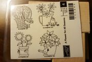 stampin Up Wooden Stamps New 14 Sets