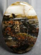 53+ct 40 X 29 X 5 Mm Extremely Rare Vintage Priday Plume Agate Oval Cab Oregon