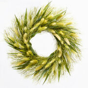 Richland Preserved Willow Wreath 14 Set Of 6 Home Fall Door Decor Autumn Events