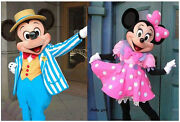 Hot Sale Mickey And Minnie Mouse Adult Mascot Costume Party Clothing Fancy Dress