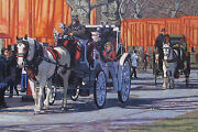 Original Oil Painting, New York City Central Park Carriage Rides, Listed Nr