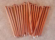 3.5 Inch Copper Nails For Killing Trees Stumps And Roots - 20 Count