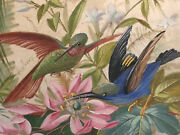 Screen Shield Fire Silk Painting Xix ° Bird Flower Antique French Painting 19th