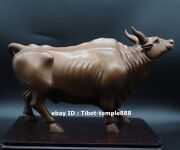 32 Cm Red Copper Bronze Chinese Zodiac Lucky Fengshui Animal Ox Oxen Bull Statue