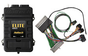 Haltech Elite 2500 Andeacutecu And Ford Mustang Gt And Cobra 99-04 Prise And Jeu Adaptateur