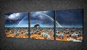 Rainbow In Desert Set Of 3 Canvas Picture Print Wall Art Free Fast Delivery