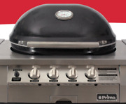 Primo Oval Built-in Gas Kamado Grill Ceramic Easy To Use Best Kamado