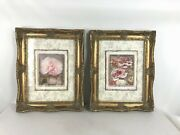 Artist Maron Paragon Floral Cabbage Rose Art Prints Framed Pictures Lot Of Two