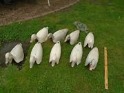 Set Of 8 Vintage Standard Canada Snow Goose Shell Geese Decoys