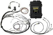 Haltech Elite 1000 + Mazda 13b S6 8 Cas With Ign 1a Ignition Terminated Loom Kit