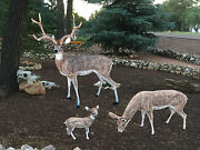 Family Of Deer Aluminum Statues Natural Color Buck, Grazing Doe And Baby Doe
