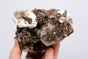Poker Chips Muscovite Mica With Cleavlandite Crystals Mineral Rock Brazil Ddl441