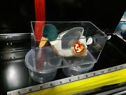 Ty Beanie Baby Jake The Duck Rare Pristine Encased Untouched Collectors Item