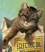 1880s-90s Quack Medicines Dr. Thomas Eclectric Oil Blood Bitters Lot Of 6 P205