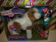 Furreal Friends Baby Butterscotch My Magical Show Pony Still New Free Shipping