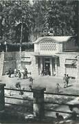 Butterfly Stamp Mineral Water Main Spring Borsec Romania Postcard