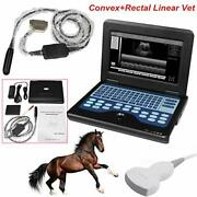 Tow Probes Contec Vet/veterinary Portable B-ultrasound Scanner Convex + Rectal
