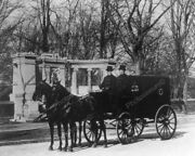 Pabst Brewing Co Horse And Wagon Ny 1900s 8 - 10 Bandw Photo Reprint