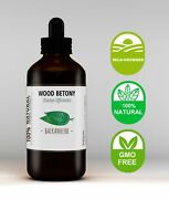Wood Betony Tincture / Stachys Officinalis / Herbal Extract