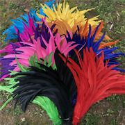 Wholesale 10-1000pcs 16-18 Inches/40-45 Cm High Quality Rooster Tail Feathers