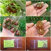 Heirloom Black Tomato And039and039black Cherryand039and039 100 Top Quality Seeds - Extra Rare Sweet