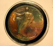2001 American Silver Eagle Toned And Uncirculated Great Gift