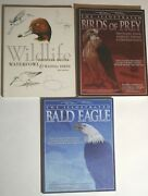 Bird And Duck Wildlife Design Carving Painting Books Lot 3 Hardcover Softcover