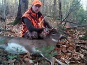 Guided Maine Whitetail Deer Hunt
