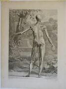 Original Antique Copper Plate Engraving Anatomy Muscles Of The Human Body 1749