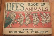 Life's Book Of Animals - 1898 First Edition Hardcover E.w. Kemble T.s. Sullivant