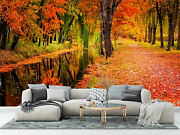 Autumn Colored Trees Over The River Wallpaper - Large Wall Mural, Self-adhesive