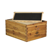 Hoover Hives Wax Coated 10 Frame Deep Brood Box W/ Frames And Foundations