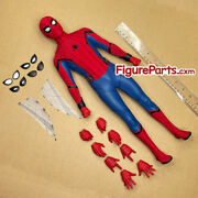Figure Parts - Head Body Hot Toys 1/4 Scale Spiderman Homecoming Qs014b Qs015b