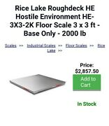 Rice Lake Roughdeck He Hostile Environment He-3x3-2k Floor Scale 3 X 3 Ft