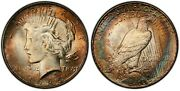 1925 Gem Bu Pcgs Ms65 Peace Silver Dollar - Toned With Outstanding Color