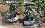 Massive Fine Pair Antique Chinese Flambe Foo Dogs Temple Pottery Statues 30tall